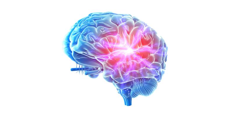 Teoria del cervello trino